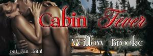 willow brooke, cabin fever, jk publishing, brooke, sexy, cabin, love,