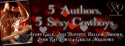 avery gale, jess buffett, willow brooke, lynn ray lewis, gracie meadows, cowboys and candy, cowboys, valentine, anthology, sexy, candy